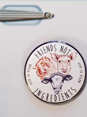 Fridge Magnet: Friends NOT Ingredients