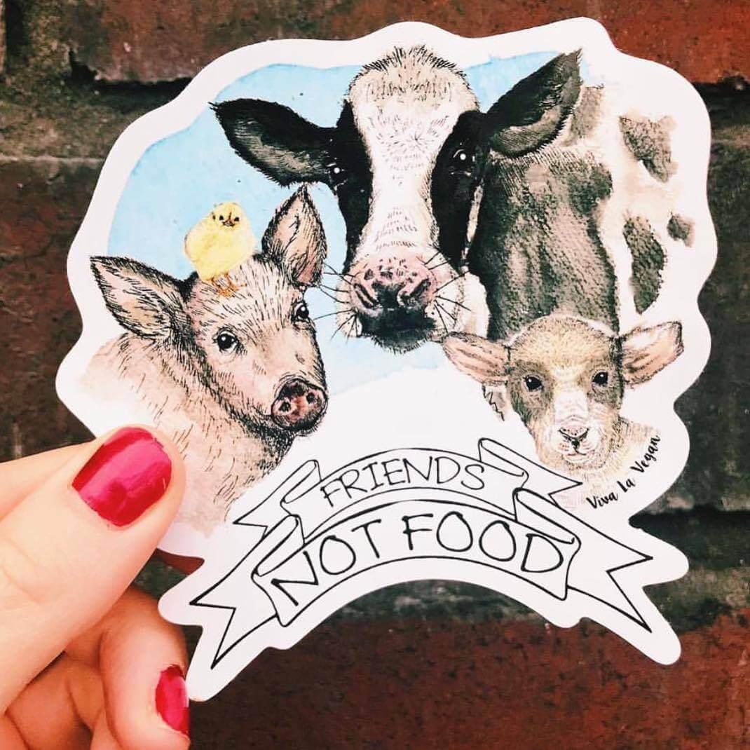 Vinyl Vegan Sticker - Friends Not Food