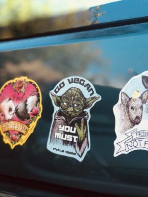 Shaped vegan magnets on car by Viva La Vegan