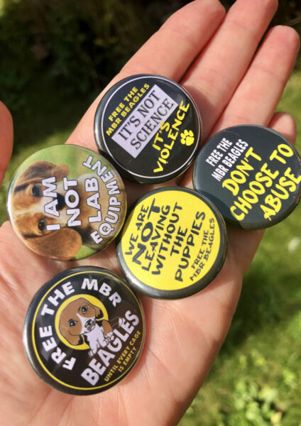 Free The MBR beagles Official merch 32mm badges