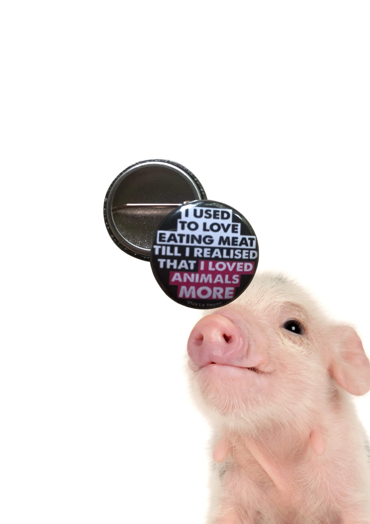 I used To Love Eating Animals 25mm badge by eco-ethical brand Viva La Vegan